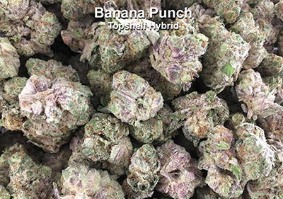 Banana Punch Hybrid Exotic topshelf