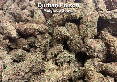 Durban Poison Sativa Topshelf Sativa Flower