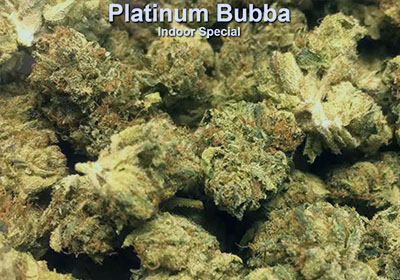 <br /> Platinum Bubba indoor indica midshelf on sale