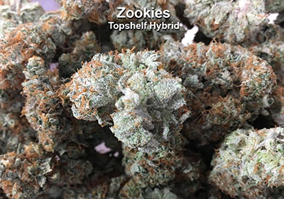 Zookies Hybrid Top Shelf